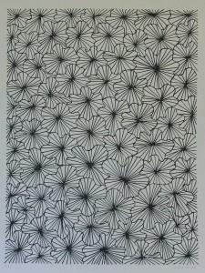 Schoonhoven, flowers
